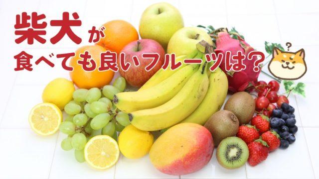 柴犬が食べても良いフルーツは?